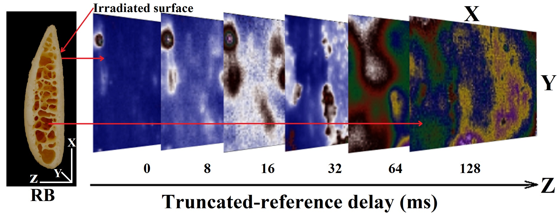 Truncated-reference-delay